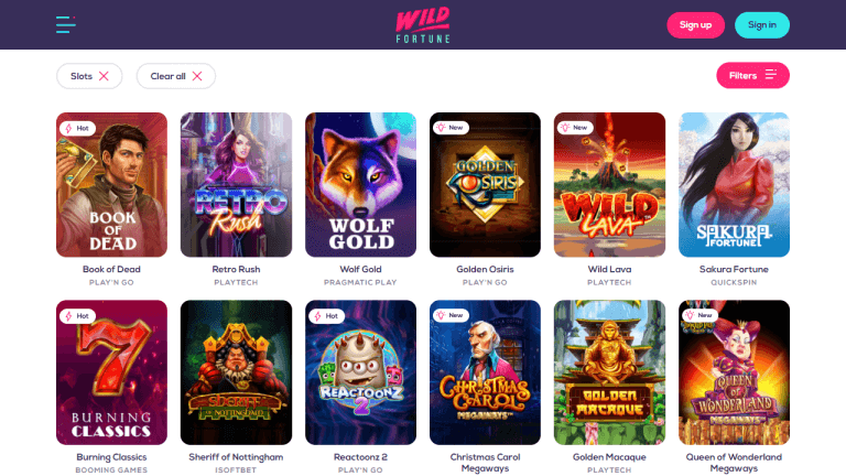 Wild Fortune Casino Screenshot 2
