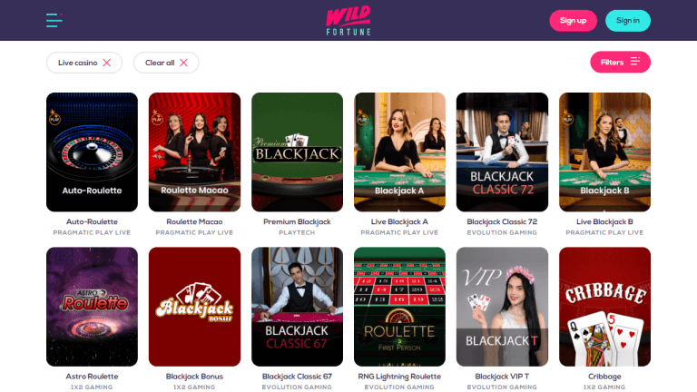 Wild Fortune Casino Screenshot 3