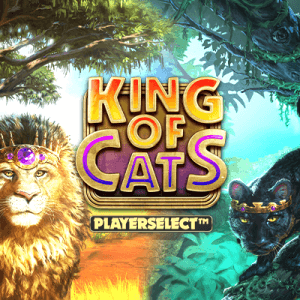 King of Cats Megaways  logo review